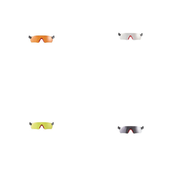 PROTOS Integral Schutzbrille - verschiedene Farbausführungen-